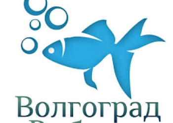 Производство и торговля: рыба горячего и холодного копчения, вяленая, мороженая