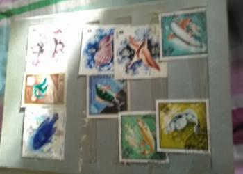 Коллекция марок.