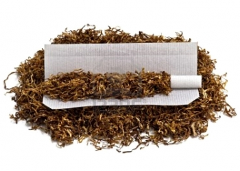Семена настоящего табака