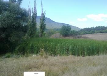 Продается земельный участок с озером ЛПХ 1га село Аромат