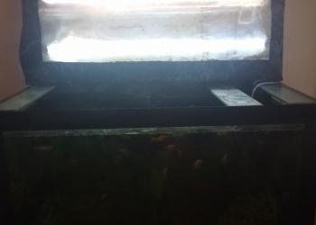 Аквариум.тумба.со2.водоросли.рыбы.сифон.аэраторы.лампы и все всё.