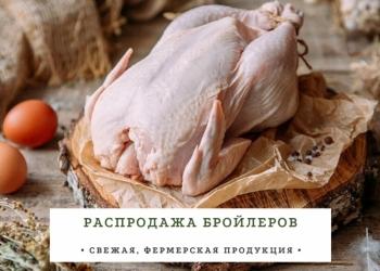 Мясо Курица (деревенское)