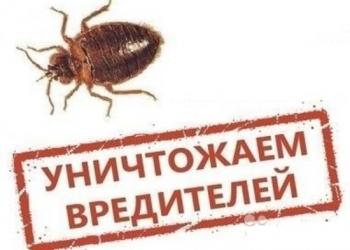 Уничтожим Тараканов, Клопов, Клещей, Грызунов и сорняков.