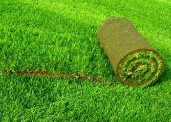 Продам Биомат газон