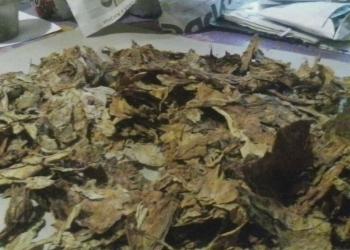 Табак листовой продам