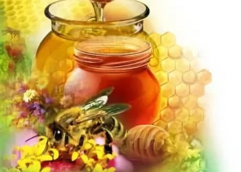 мёд оптом закупаем!!!