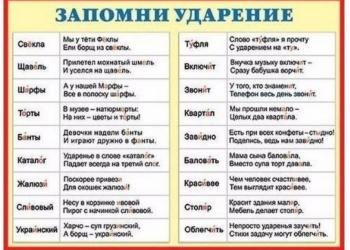 Опытный репетитор по русскому языку