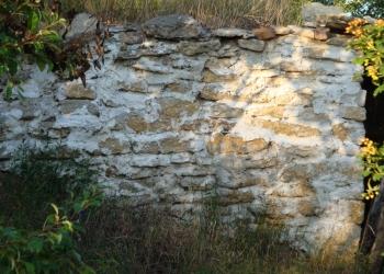 Дом 30 м есть деревянный сарай каменный подвал сад