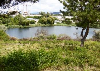 Участок 20 соток на ул. Б. Хохлова с берегу 100 м от  озера