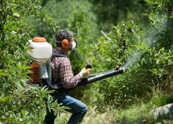 Обработка(опрыскивание) участка от сорняков,вредит
