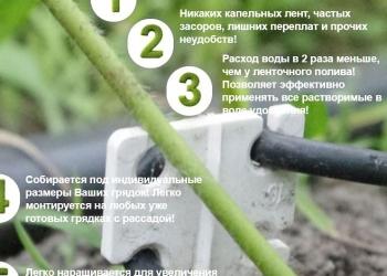 """капельный полив Кошелева """"Кап и каП"""". запатентиповано"""