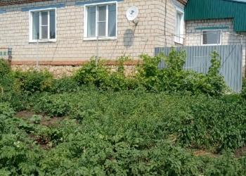 Дом в д. Викторовка