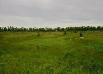 Земельный участок 15 га