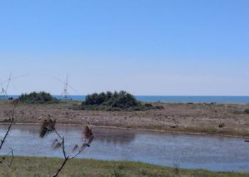 Участок на берегу Черного Моря.в Пицунде