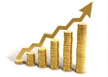 Увеличу прибыль вашей компании на 25%