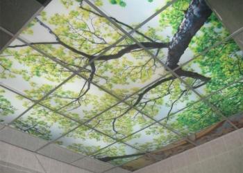 Стеклянные потолки на заказ