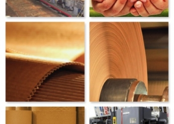 Компания реализует картон, целлюлозу, бумагу основу