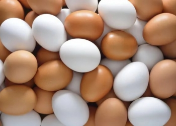 Куриное яйцо.