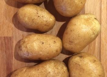Картофель сорт Бриз, калибр 5+,  в наличии другие сорта.