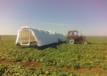Прицепная платформа для сбора урожая огурцов