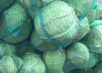 Картофель, Морковь, Свекла, Лук, Капуста, Яблоки оптом напрямую от производителя