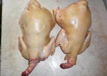 Курица бройлерная фермерская экологически чистая
