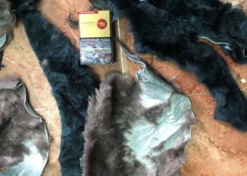 Лоскут меха ( мутон, овчина)
