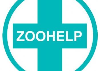 Ветеринарные услуги 24 часа