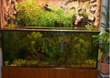 Продам аква-паллюдарумный комплекс всё установлено