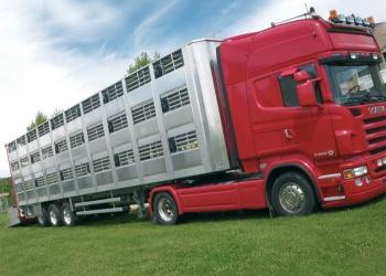Доставка живого груза скотовозами