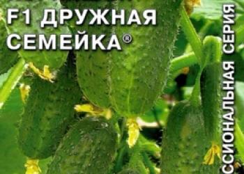 Продам семена-Огурец Дружная семейка F1,гибрид для теплиц,без горечи