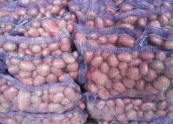 Картофель - овощи оптом из Иркутска с доставкой