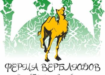 Верблюжье молоко для питания и оздоровления