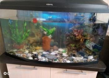 ПРОДАЕТСЯ благоустроенная квартира для рыбок со всеми удобствами