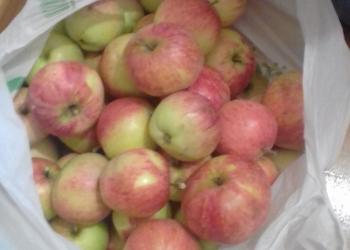 Продаю яблоки(штрифель)