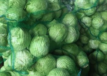 Марковь,капуста,свекла,картофель оптом от производителя