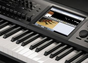Репетитор- фортепиано,синтезатор.