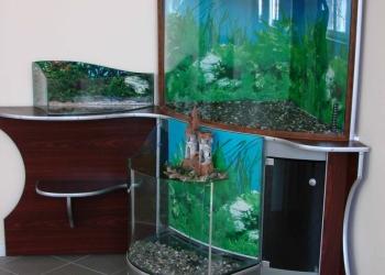 Комплекс аквариумов
