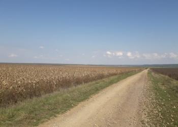 Хозяйство 680 гектар.