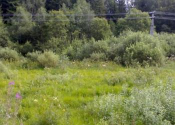Земельный участок, Рузский район, пос. Старая Руза