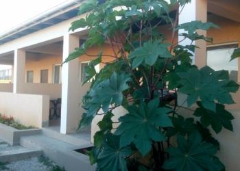 Гостиница возле Моря.