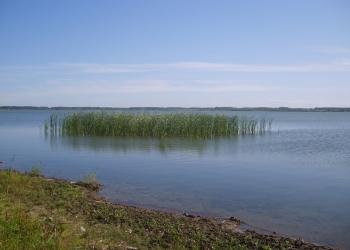 Участки д. Знаменка, у озера Карагуз.