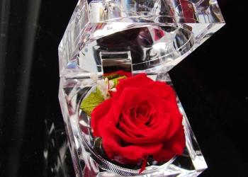 Роза в колбе