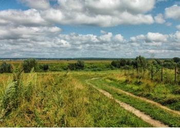 Покупайте землю на берегу реки Угры, ее больше не делают.