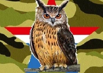 Армия и военная служба - советы экспертов