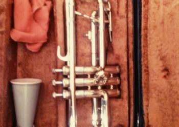 Музыкальная труба , продам