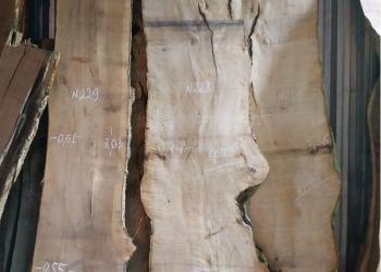 Необрезная доска, слэбы, спилы массива дерева