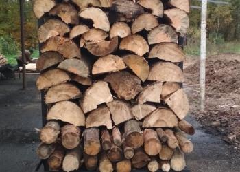 производство древесного угля - бизнесплан