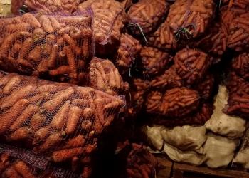 Картошка-овощи, картофель, лук, капуста, морковь, свекла, тыква