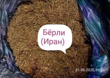 Семена табак, рассада табак ( без химии и примесей)